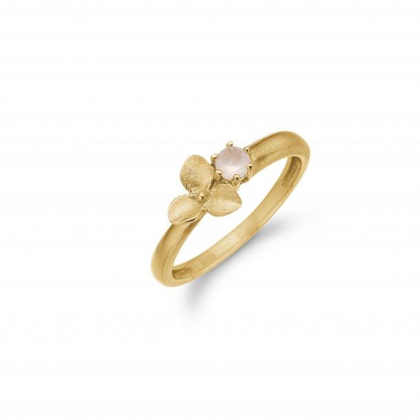 Aagaard Sølv ring - 03621662-70
