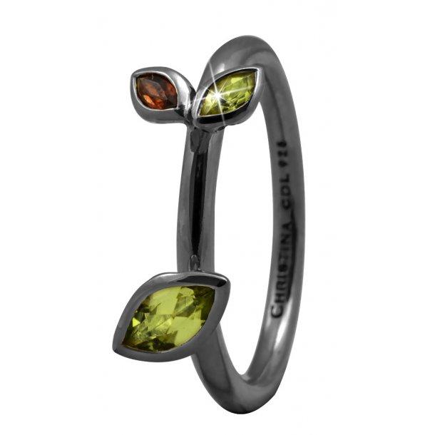 CHRISTINA Black Sølvring  - 2.3D