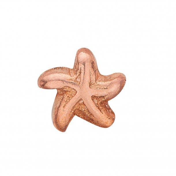 CHRISTINA Collect Starfish - 603-R7